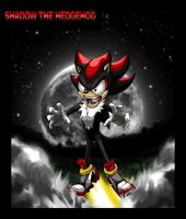 Shadow the Hedgehog by VladimirJazz