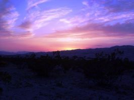 Mojave Sunset by Junthor