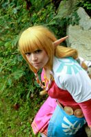 Legend of Zelda Skyward Sword: Skyloft Zelda by VandorWolf