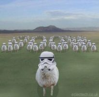 The Sheep Clone Wars by Robopoop