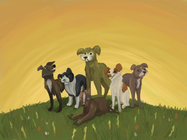 The Pack on a Hill by Ramvling