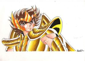 SEIYA DE SAGITARIO COLORES.... by MUERTITO69