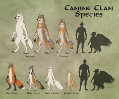 Canine Clans Overview by KatieHofgard