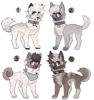 adopts open! lowered by jailbite
