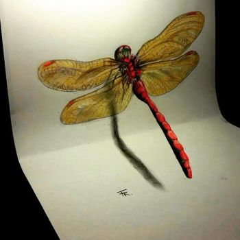 3d dragonfly (timelpase video link below) by Yakise