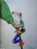 Frog by linaMiller