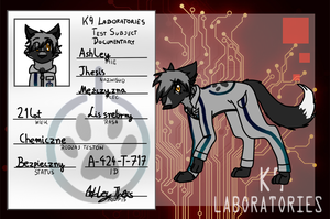 K9L - Ashley Thesis by Wiktoria00