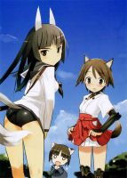 Strike Witches- Wallpaper 2 by hanahin