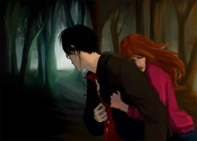 Harry and Ginny by Milkymilla