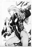 Black Canary 1 by ikbarron