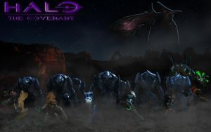 Halo|The Covenant (wallpaper) by Nick004