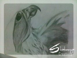 .. Falcon Sketch _ step 5 .. by Shahenya