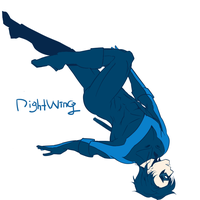 Nightwing by Operapink