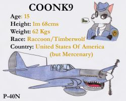 Coonk9 and his P-40N by DingoPatagonico