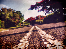 the road less travelled. by jazza-v