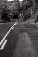 Long Road Ahead II by LoneWolfPhotography