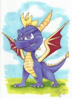 Spyro the Dragon 1 by Kellalizard