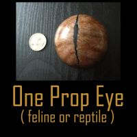 Prop Eye by Anesthetic-X