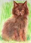 Fluffy Baby for Jocelyne by philippeL