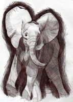 elephant by vonzilla