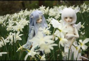 Laelia 12.013 by Kaalii
