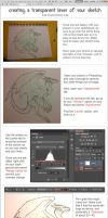 Transparent Sketch Tutorial - Photoshop CS6 by TheJiggyMonster
