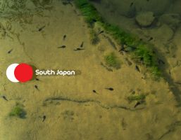 south japan map by zfk