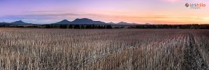 Stirling Ranges Farm by Furiousxr