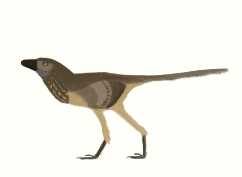 Fluff Neck (undescribed dromaeosaurid) by casielles