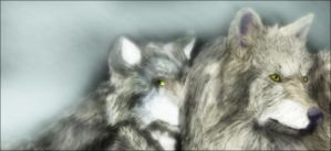Wolfs by Rcal