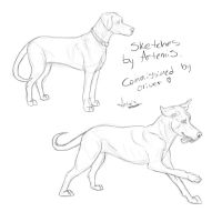 Sketches For Oliver by DaggarHeart