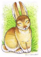 ACEO - Bunny by synnabar