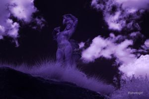 IR Queens Of Stone X - 950nm by IRphotogirl