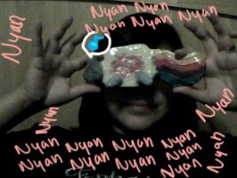 My Own Nyan Cat by girloveslink