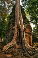 Ta  Prohm 2 by CitizenFresh