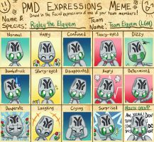 Expressions Meme Example 2 by Galactic-Rainbow