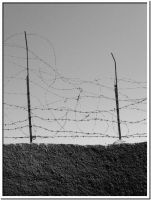 The Barbed Code by PAMDavi