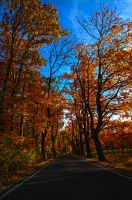 Fall HDR by Tobbesarts