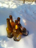 Beer in Snow by Ghost8969