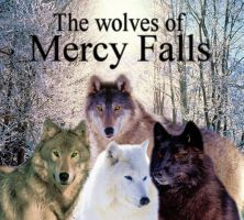 The wolves of Mercy Falls by Naii09