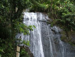 Puerto Rico Waterfall by penguin-cube