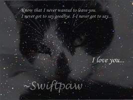Swiftpaw Tribute by RavenfeatherForever