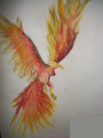 Phoenix by miamary123456