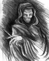 Lord Voldemort by CamT