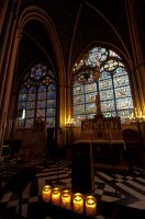 Inside Notre Dame Cathedral by DanielleMiner