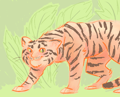 tiger by ccarry