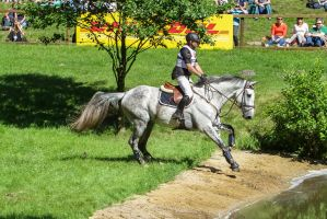 3DE Eventing Stock Water Combination Waterside by LuDa-Stock