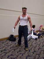 Wolverine fan photo 2 by Anaththeanswer