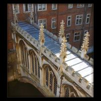 Bridge of Sighs...or Souls? by Forestina-Fotos