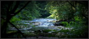 Panther Creek by wylf